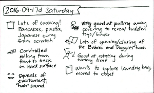 2016-09-17d Saturday #daily #journal