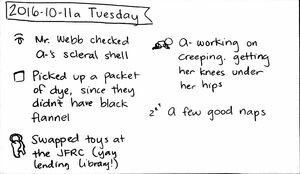 2016-10-11a Tuesday #daily #journal