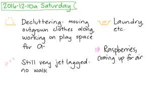 2016-12-10a Saturday #daily #journal