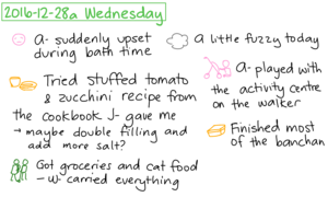 2016-12-28a Wednesday #daily #journal