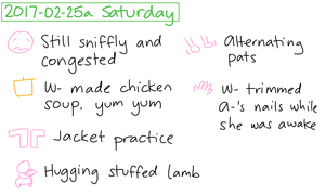 2017-02-25a Saturday #daily #journal