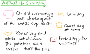2017-03-11a Saturday #daily #journal