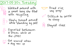 2017-05-30c Tuesday #daily #journal