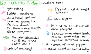 2017-07-14b Friday #daily #journal