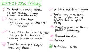 2017-07-28a Friday #daily #journal