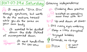 2017-07-29d Saturday #daily #journal